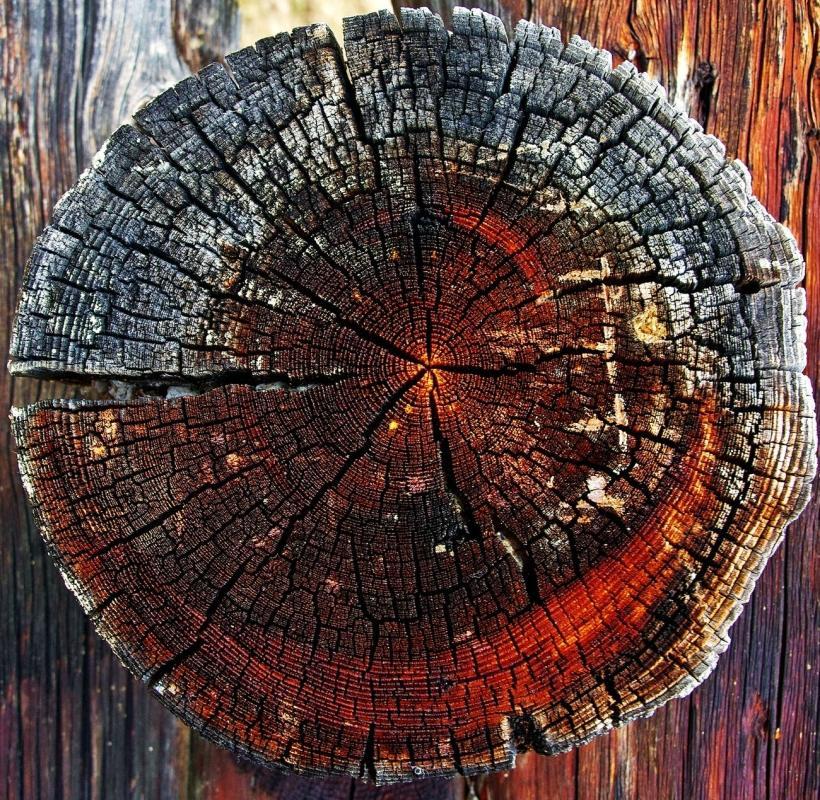 pexels-photo-325333 - wood - fire a